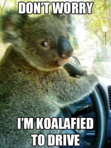 He's Koalafied