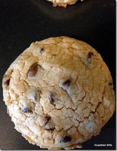 Bisquick Cookies 10