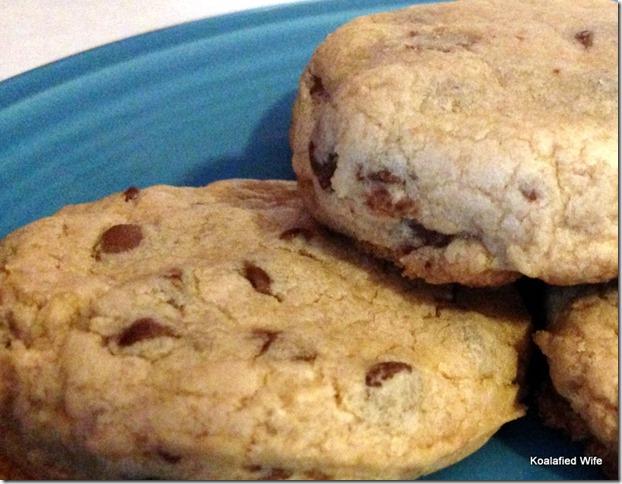 Bisquick Cookies 14